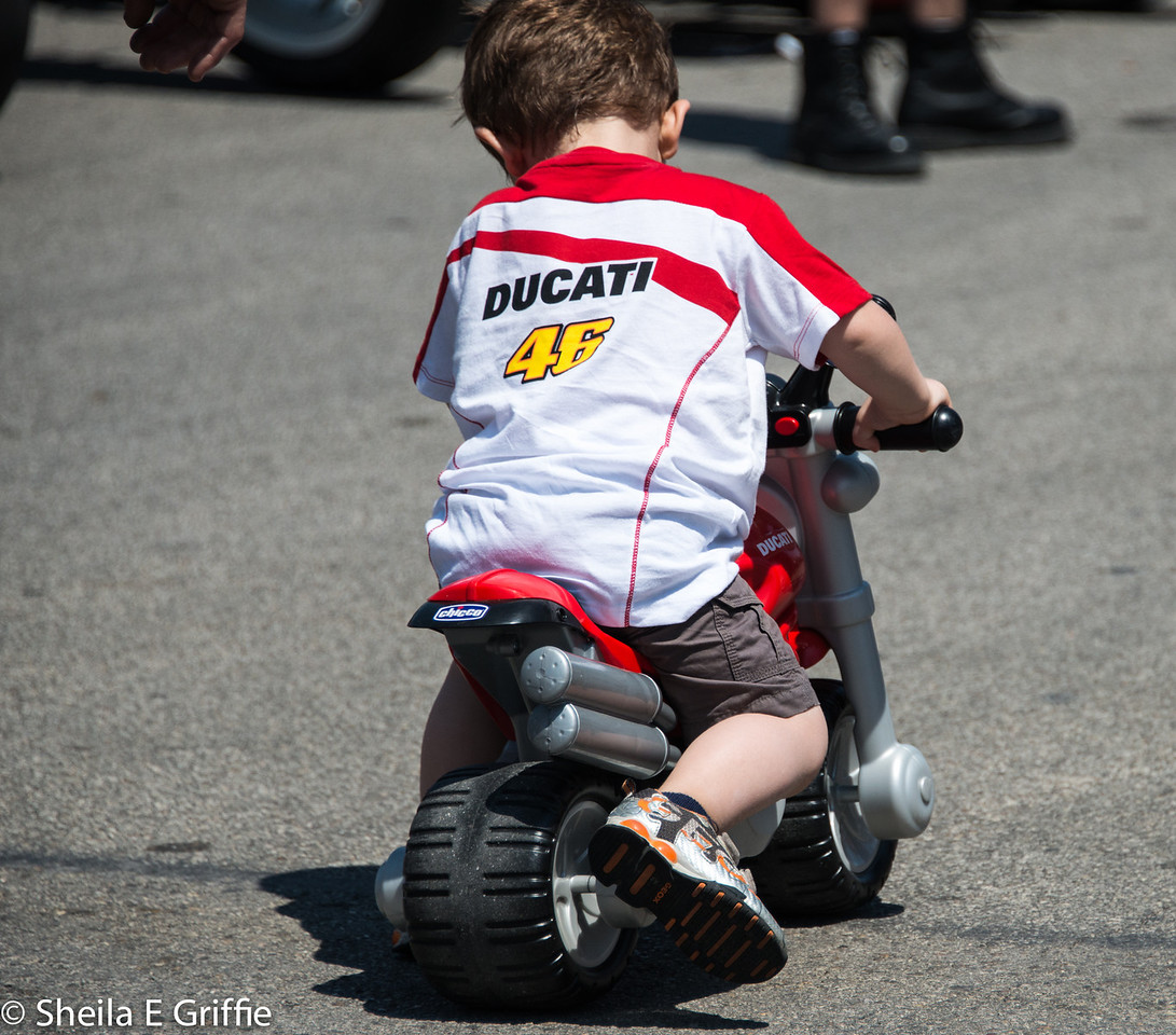 2012 WDW - Ducati