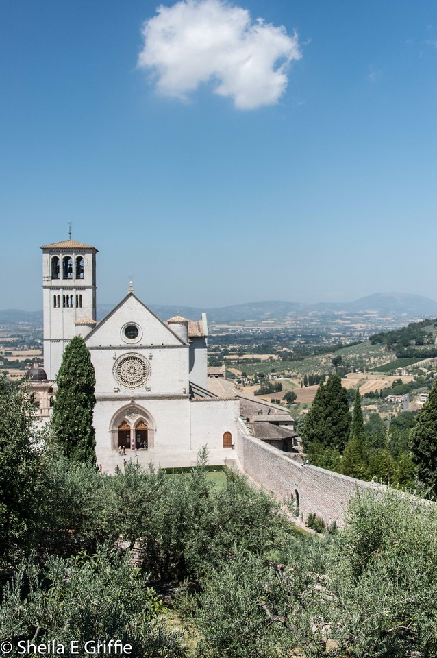 2012-07-15 Assisi & Family Sunday-4587