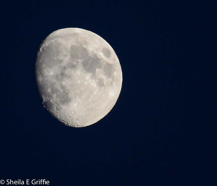 2012 Ravenna, Italy - La Luna