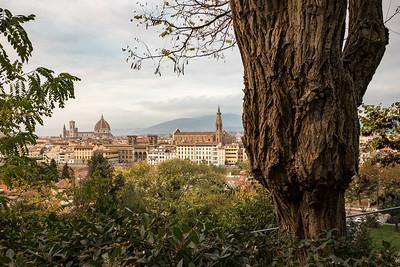Florence 2015-15