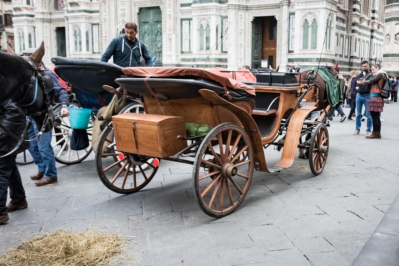 Florence 2015-110