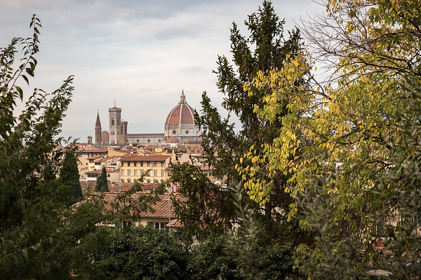 Florence 2015-11