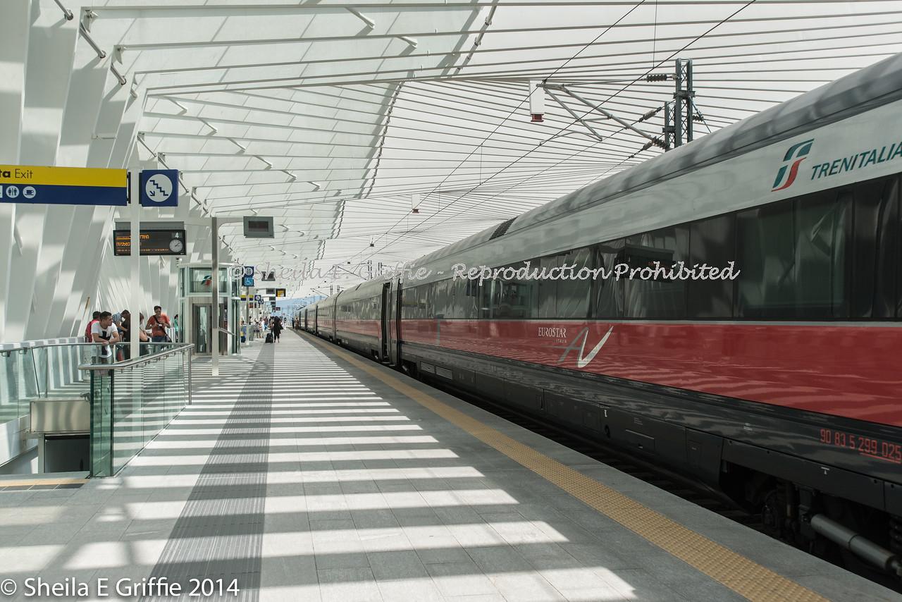 2014  TAV Mediapadana - Reggio Emilia, Italy