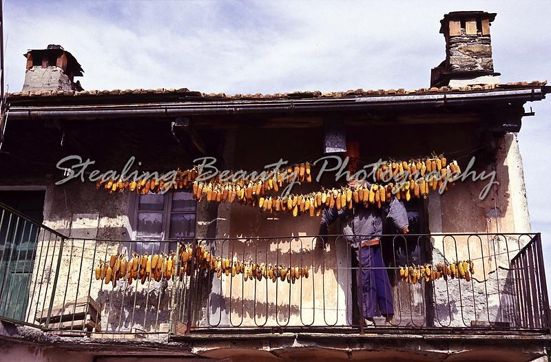Corn drying