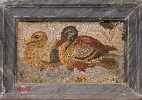 Unknown, Mosaic ducks
