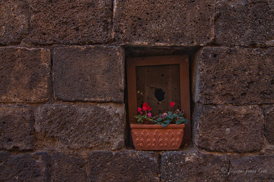 Window at old house in Orvieto (c)Runaway Juno (c)Runaway Juno