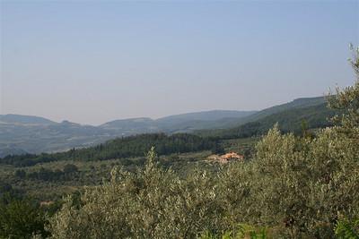Fiesole 013 1024