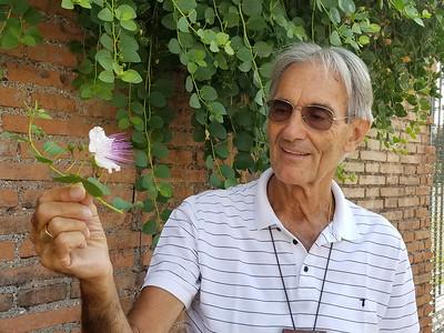 Rome_Franco_Caper Flower