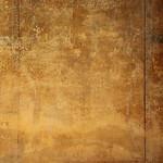 Framed border from Pompeii