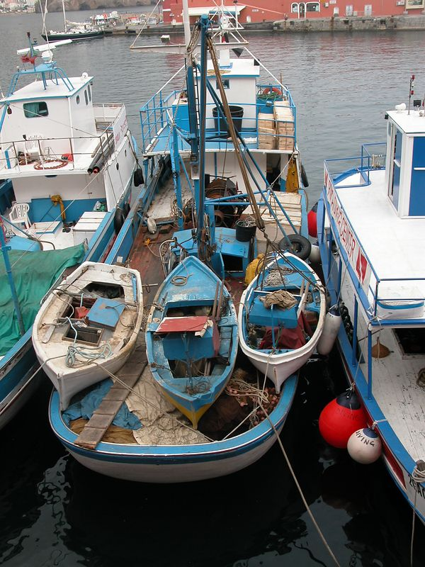Ponza, Italy<br /> Fishing Boats