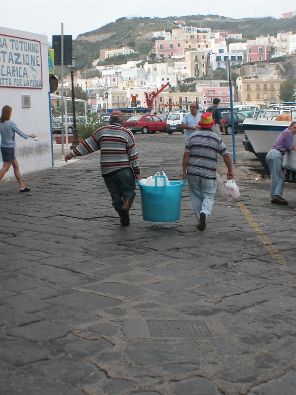 Ponza, Italy<br /> Fishermen carrying today's catch