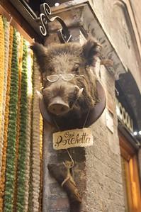 Siena's wise boar