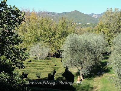 Tuscany October 2017-2585