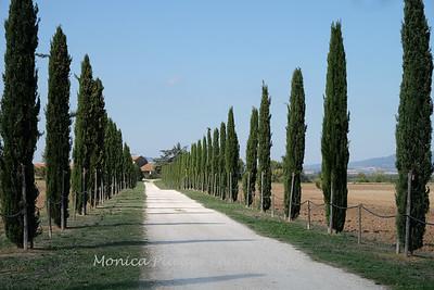 Tuscany October 2017-2118