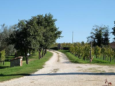 Tuscany October 2017-2161