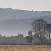Misty Tuscan farmhouse