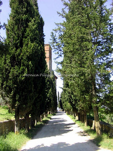 S. Anna in Camprena, where the English Patient was filmed.