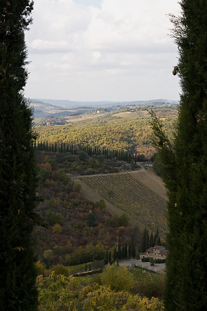 Countryside surrounding Radda in Chianti