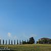 Cedar tree lined farm road near Montalcino