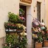 Montalcino: flower shop