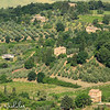 Small farms surrounding Montalcino