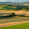 Tuscan farmhouse in the early morning: after the baling