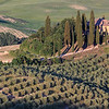 Tuscan farmhouse with olive trees
