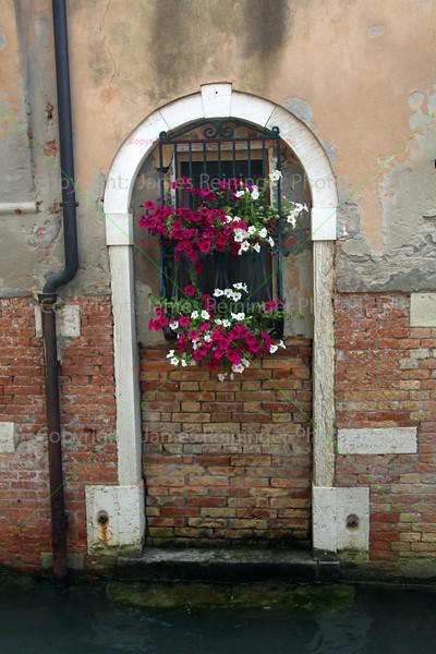 Bricks and Flowers