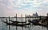 Gondolas at the Waterfront Venice