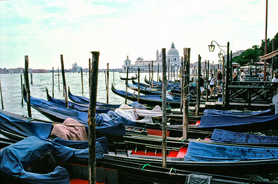 Gondolas at the Waterfront Venice