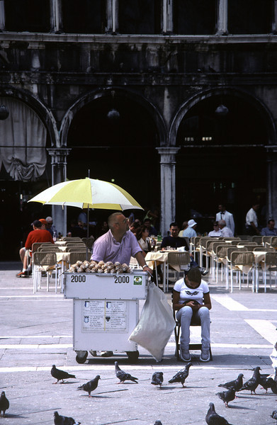 Pidgeon food seller Piazza San Marco Venice