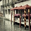 Venice Flowers with a Vintage Look