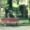 Park Bench in Venice