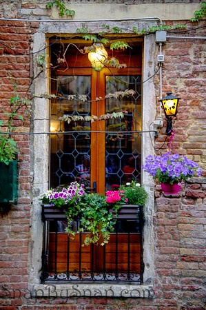 Venice Window with Flowers and Lights