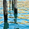 Pilings in Water