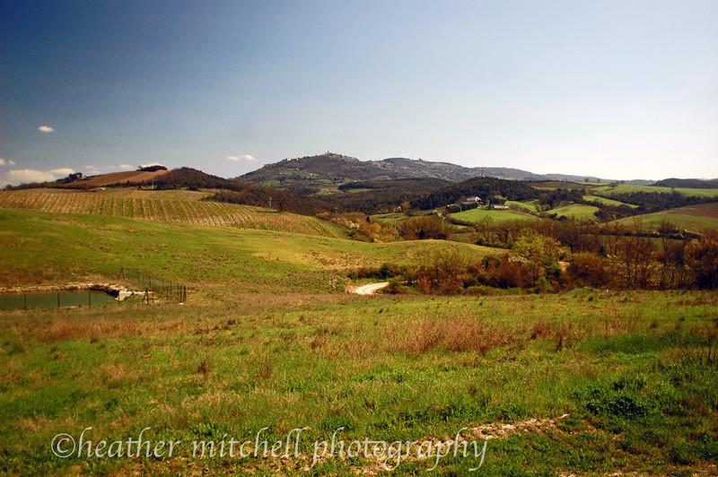 Brunello Wine Region, Tuscany