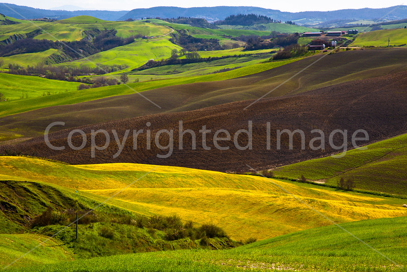 Spring in the fields of Tuscany