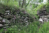 Overgrown castle wall.