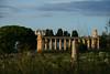 Temple, Paestum, Italy