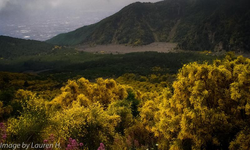 Atop Mt. Vesuvius
