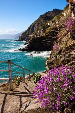 Coast at Riomaggiore