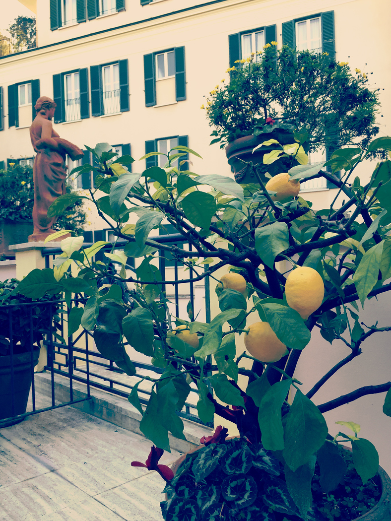 The Intercontinental in Rome with lemon trees on the patio is a beautiful hotel but it is in the heart of the tourist zone.