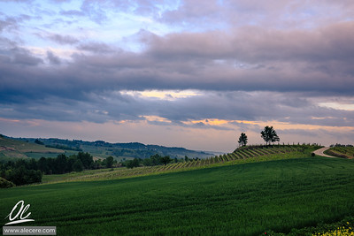 Monferrato sunset