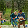 VC Olive Harvest 20101113 - 0028