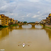 Arno Rower