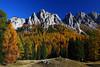 ITA- Croda da Lago, Dolomites IMG_9763