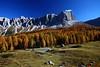 ITA- Croda da Lago, Dolomites near Cortina IMG_9768sm