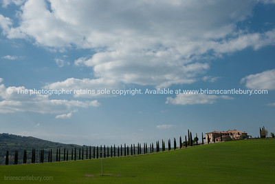 Lined with cypress tress, long drive to home. Italian images.