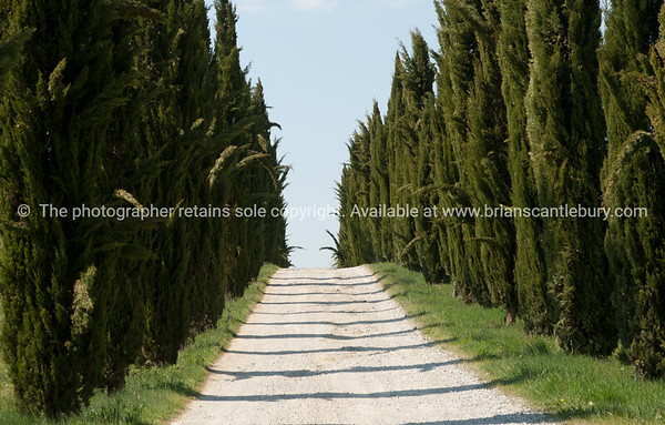 """Italy, its antiquary, artworks, landscapes and people. SEE ALSO:    <a href=""""http://www.blurb.com/b/2322683-spqr-italy"""">http://www.blurb.com/b/2322683-spqr-italy</a> and  <a href=""""http://www.blurb.com/b/2314371-gubbio-medieval-italy"""">http://www.blurb.com/b/2314371-gubbio-medieval-italy</a>"""