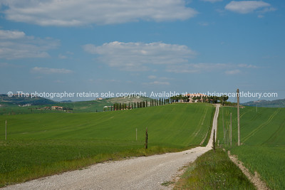 Rural Tuscany, long drive to the home. Italian images.